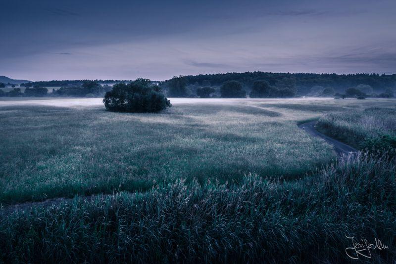 Hassfurt, Augsfeld, Mainaue, Naturschutzgebiet, Naturschutzgebiet Mainaue, Großer Wörth, Sichelsee