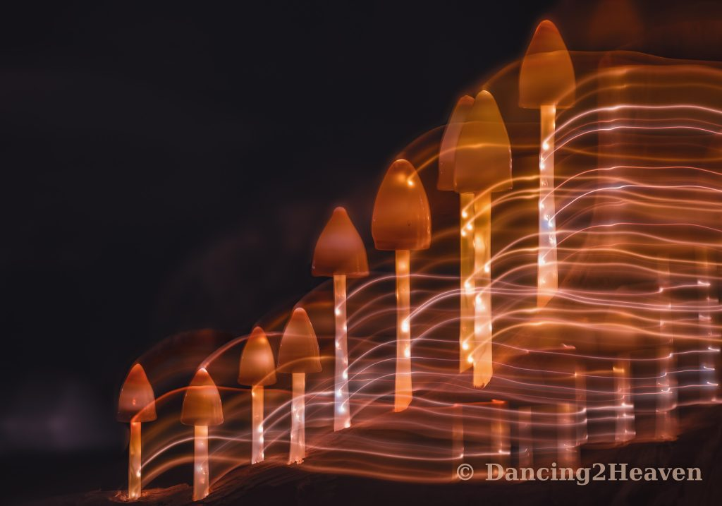 Kronach leuchtet 2018- Lichtspuren