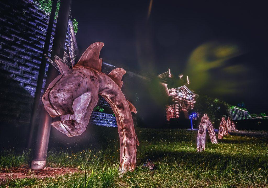 Kronach leuchtet 2018 - Burgdrachen