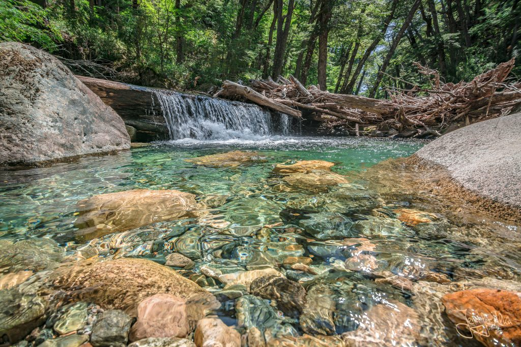 5 Tage Trekking-Tour bei Bariloche: Von Colonia Suiza zur Laguna Negra